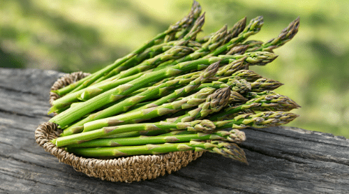 23 Healthiest Foods On Our Planet