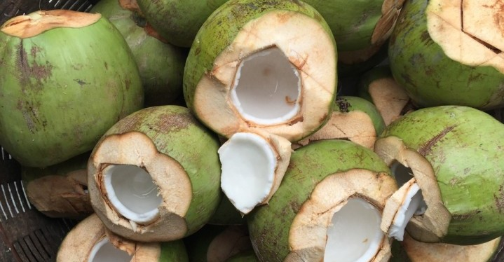 open green coconuts with milk