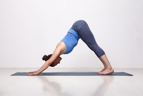 Downward Facing Dog Basic Yoga Pose