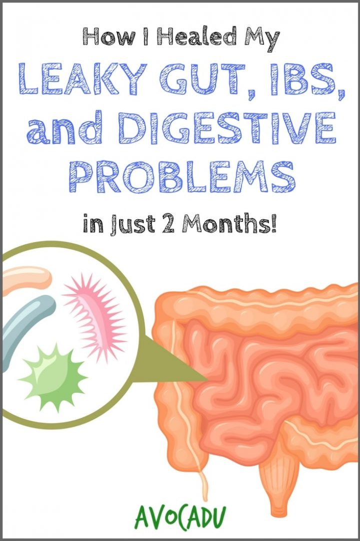 How I Healed My Leaky Gut, IBS, and Digestive Problems in 2 Months | Heal Leaky Gut | Lose Weight | Avocadu.com