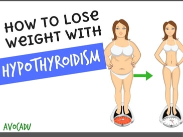 how to lose weight with hypothyroidism  avocadu