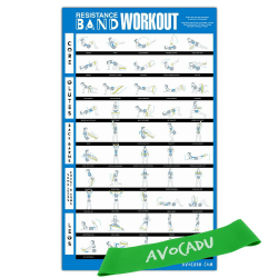 Resistance Band Workout Poster by Avocadu