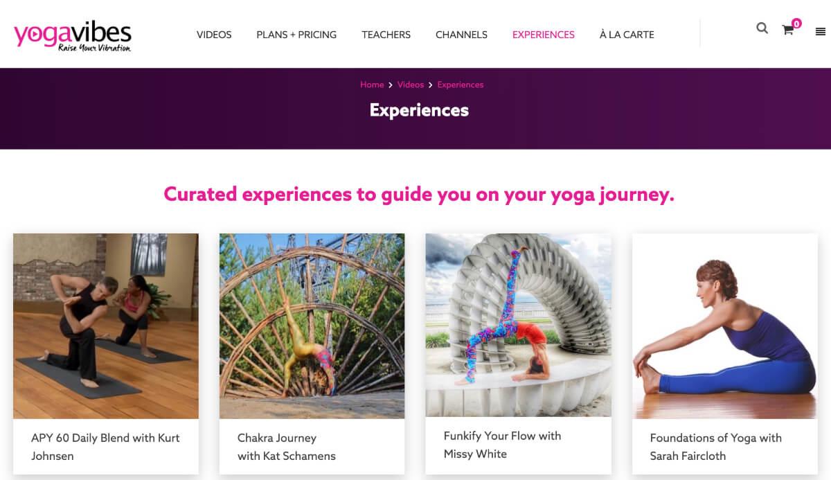 yoga vibes program