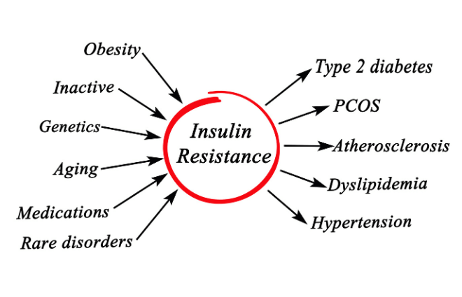 Insulin Resistance Diagram