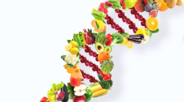 Finally Lose Weight with the Insulin Resistance Diet featured, Food DNA